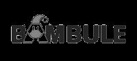 bambule-logo2
